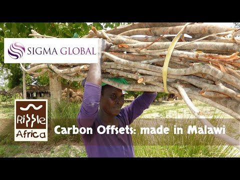 Carbon Offsets: made in Malawi - RIPPLE Africa and Sigma Global