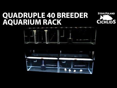 Quadruple 40 Breeder Aquarium Rack