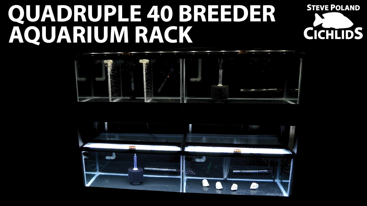 Quadruple 40 Breeder Aquarium Rack