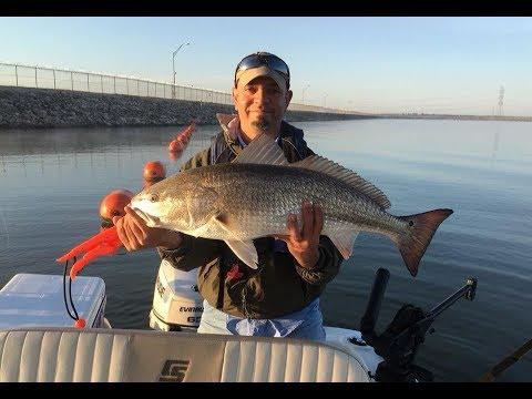 Calaveras Lake: How To Fish For Redfish