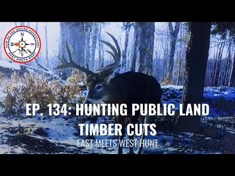 Ep. 134: Hunting Public Land Timber Cuts With Steve Sherk // Sherk's Guide Service