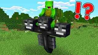 Saving Minecraft Wither from Prison...