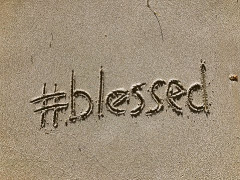 Harry's Video Blog - Bless You: Parshat Chayei Sarah