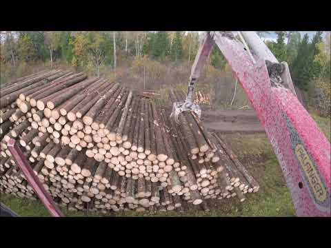 Timber Loading -