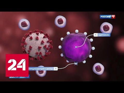 """Ждем """"таблетку надежды"""": испытания начались - Россия 24"""