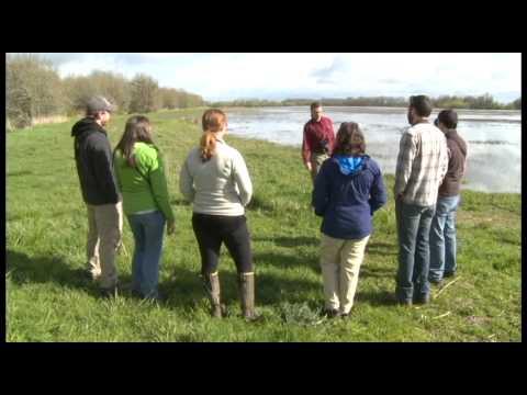 Benchmarking Birds: Citizen scientists collect data on Oregon species