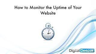 How to Monitor the Uptime of Your Website