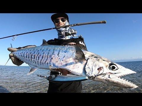 Flats Fishing Mackerel!