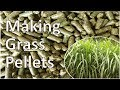 Download Grass Pellet Plant Making Biomass Fuel Pellets MP3 song and Music Video