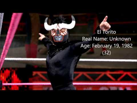 WWE Superstars Real Names And Ages 2014 (Male)