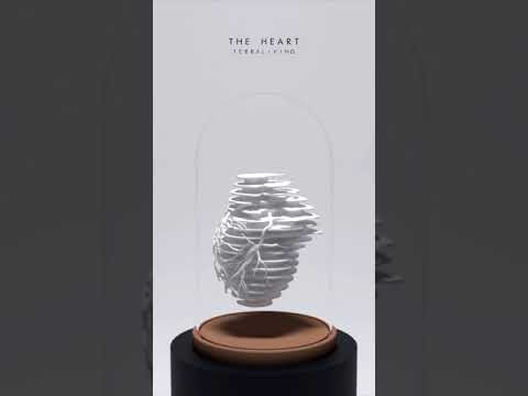 The Heart - Parametric Render by TerraLiving