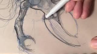 Girl drawing dark fantasy