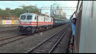 Thrilling Race with Milky White BRC WAP-5# 30075 Engine with Mumbai Central Valsad Fast Passenger