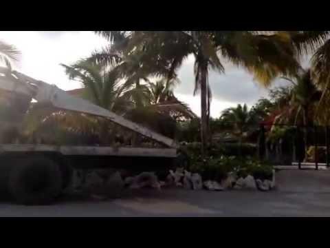 Camino a Monte Río , Azúa , República Dominicana.