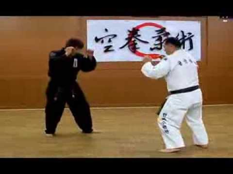 (114) Take down and Submission Combinations Gongkwon Yusul