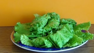 Листья салата с начинкой