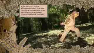 Tai Chi Chuan - Mestre Cai WenYu - Qi Gong