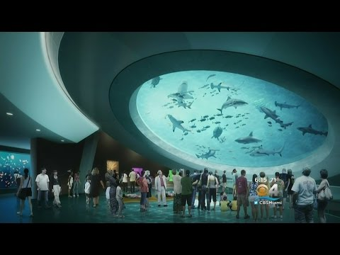 Opening Day Announced For New Frost Science Museum
