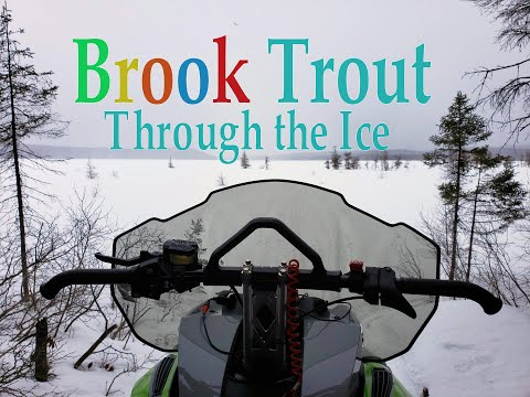 Northern Ontario Brook Trout Ice Fishing