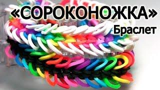 Браслет СОРОКОНОЖКА ☼☼☼☼ из резинок на станке ☼☼☼☼ Как плести из резинок Rainbow loom