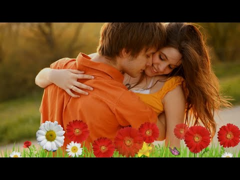 Mein Teri Mohabbat Mein Paagal  The Best Editing Song  By Jaan Jee