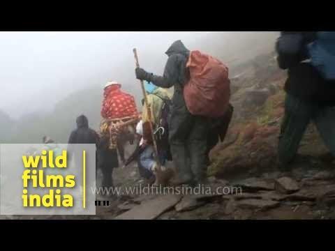 Best of Nanda Devi Raj Jat Yatra - Uttarakhand