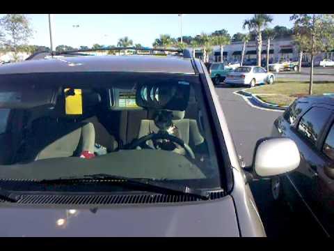 Dog honking a car horn! LOL!!!