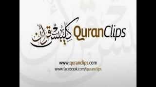 Muhammad Salah Nafea - Surah Al - Mulk (67)