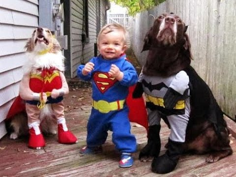 babies funny halloween videos 2015 scary baby halloween baby funny videos - Baby Halloween