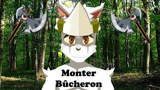 Monter Bucheron Dofus Niveau 200