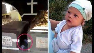 Vieron A Un Bebé Abandonado En Un Cementerio En Medio De Tumbas Plagadas De Ratas Mira El Desenlace