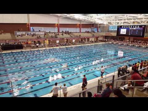 Adrian A Team Illinois 2017 200 Medley Relay