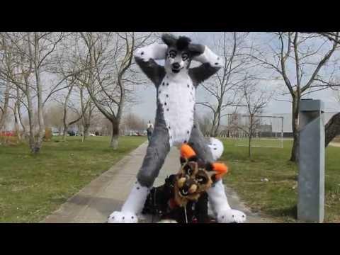 Epic Furry GangnamStyle XD