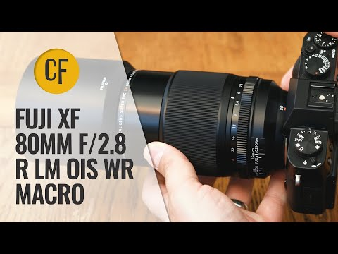Fuji XF 80mm f/2.8 R LM OIS WR Macro lens review with samples