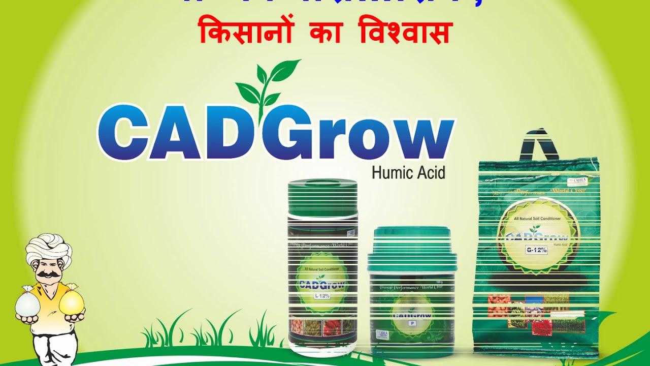 young ahmedabad based company - 1280×720
