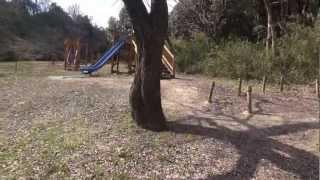 春日山公園ぶらり