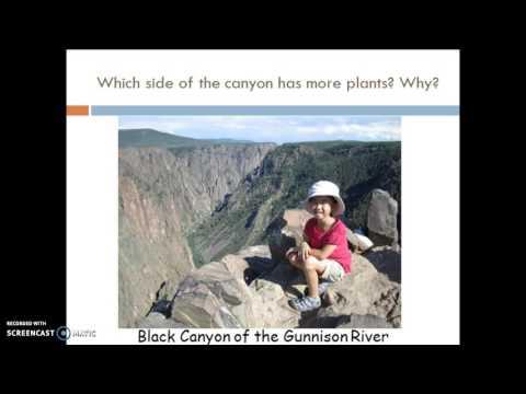 AP Bio- Intro to ecology notes