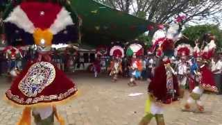 Danza de la Pluma de San Pablo Huixtepec