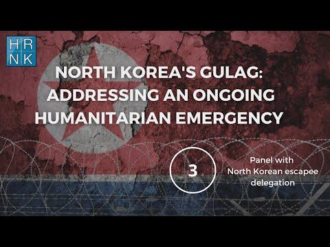 North Korea's Gulag: Addressing an Ongoing Humanitarian Emergency (3)