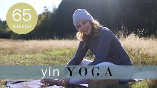 1 Hour Yin Yoga Full Class for Focus and Contemplation | Yoga with Melissa 502