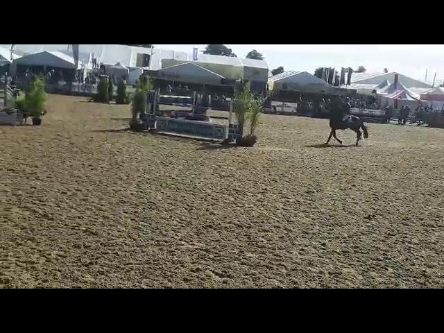 Ruxton Hullabalou RoyalHighland2018