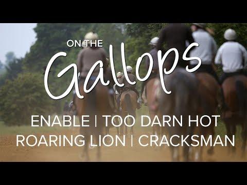 On The Gallops: Enable, Too Darn Hot, Roaring Lion, Cracksman