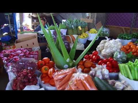 La Marqueta Houston/Michelle Quinones/Organic Food