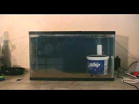 Turtle tank undergravel filter how to hook your canister for Fish tank bottom filter