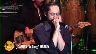 Damian Marley à Terre de Blues 2013