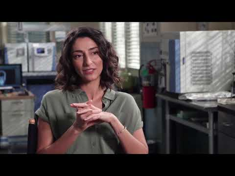 NCIS: New Orleans Cast Celebrates 100 Episodes With Nathaniel Rateliff & The Night Sweats