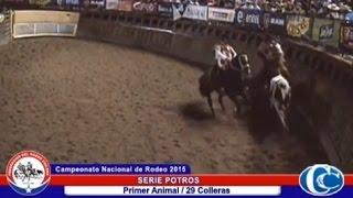 CAMPEONATO NACIONAL DE RODEO 2015 / SERIE POTROS