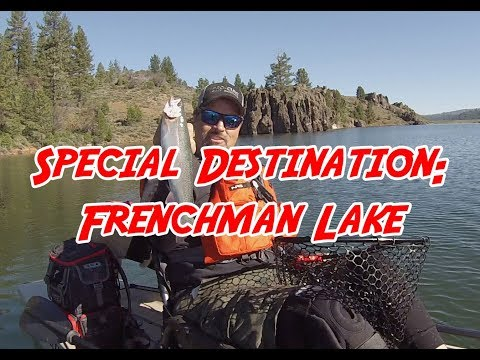 Frenchman Lake Spotlight:  Big Trout In Big Numbers
