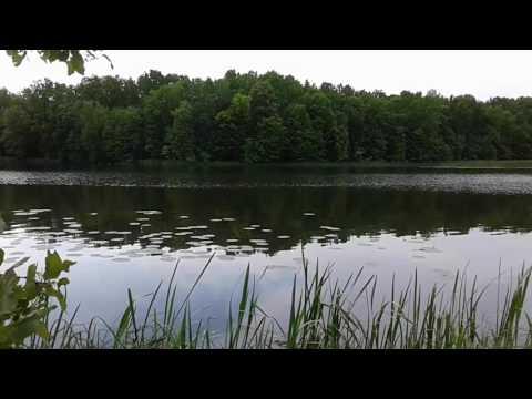 #футаж# тихо Летом на реке