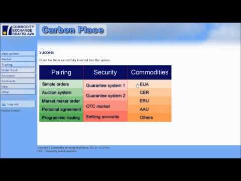 Carbon Place - Carbon auction tutorial